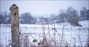 snow_fence_normandy