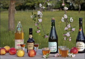 Normandy Apple cider & Calvados